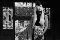 Shanghai_Shadows6_rectangle